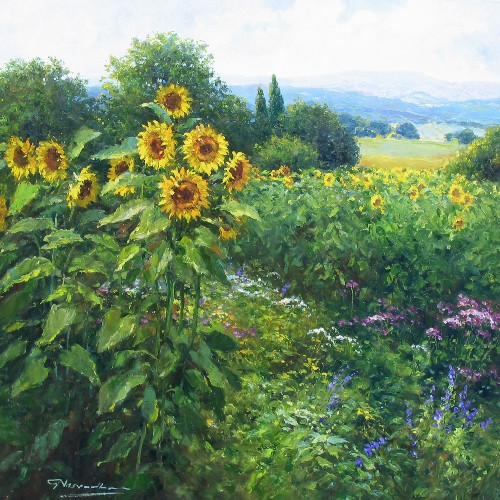 Title: SUNFLOWERS OF TUSCANY , Size: 39 x 39 , Medium: Oil on Canvas