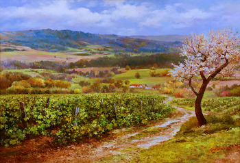 Title: Vineyards of Tuscany , Size: 30 x 40 , Medium: Oil on Canvas